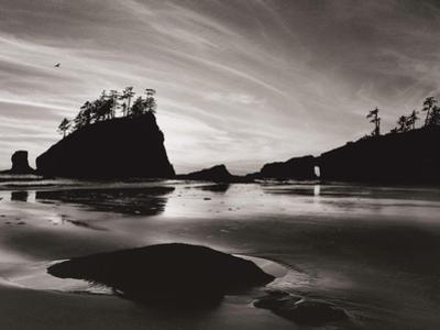 Low Tide Morning