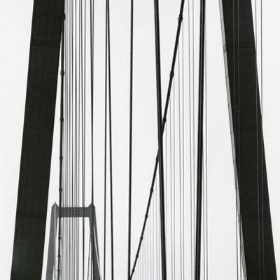 Bridge, Europe, 1971 by Brett Weston