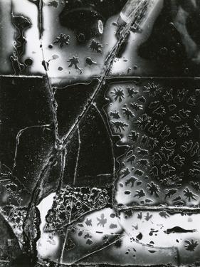 Broken Glass, 1953 by Brett Weston