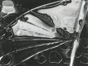 Broken Glass, 1954 by Brett Weston