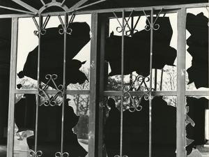 Broken Window and Metal, 1976 by Brett Weston