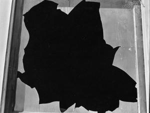 Broken Window, San Francisco, 1937 by Brett Weston