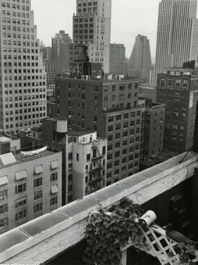 Cityscape, New York, c. 1944 by Brett Weston