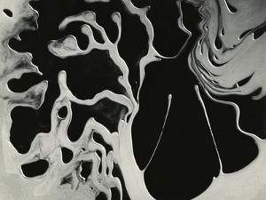 Cracked Glass, California, 1954 by Brett Weston
