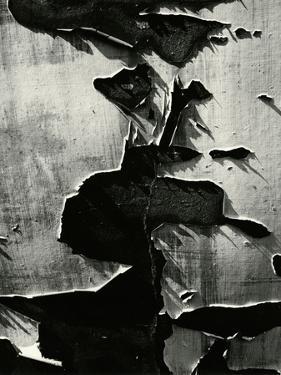 Cracked Paint, 1970 by Brett Weston