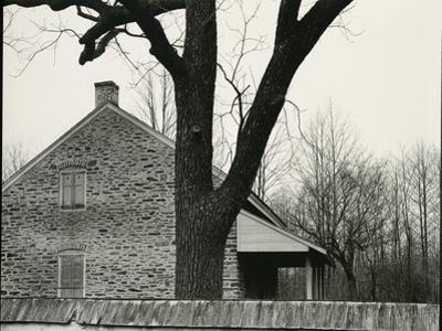 House and Tree, c. 1940 by Brett Weston