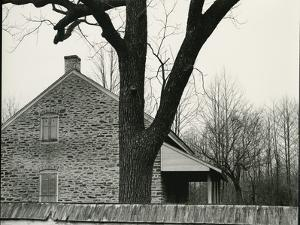 House and Tree, c. 1940 by Brett Weston