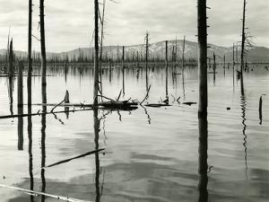 Lake Almador, High Sierra, California, 1963 by Brett Weston