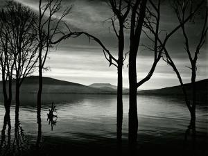 Lake Patzcuaro, Mexico, 1976 by Brett Weston