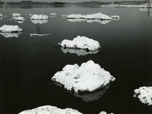 Mono Lake, California, 1969 by Brett Weston