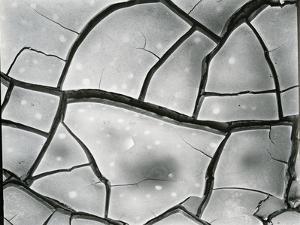 Mud Crack, High Sierra, California, 1960 by Brett Weston