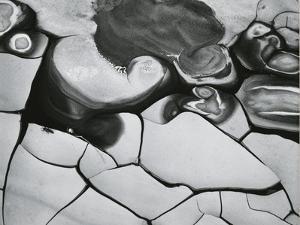 Mud Cracks, Death Valley, California, 1969 by Brett Weston