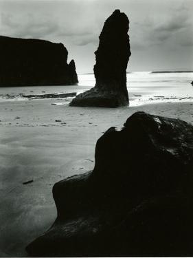 North Coast, California, 1957 by Brett Weston