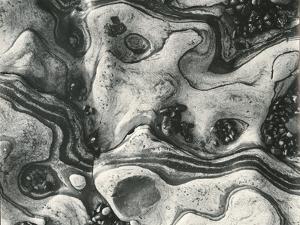 Rock and Pebbles, c.1955 by Brett Weston