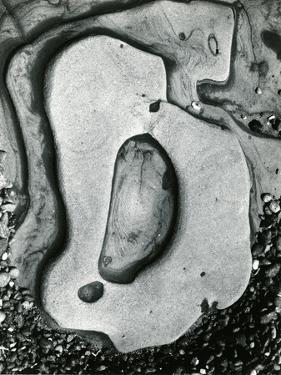 Rock and Pebbles, California, 1959 by Brett Weston