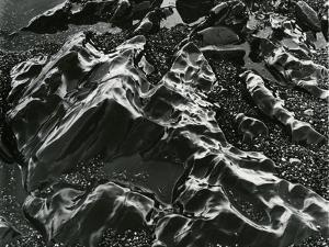 Rock and Pebbles, Pebble Beach, California, c. 1968 by Brett Weston