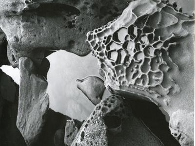 Rock and Water, c. 1965 by Brett Weston