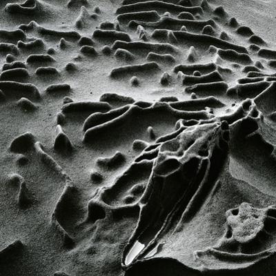 Rock Formation, c. 1965 by Brett Weston