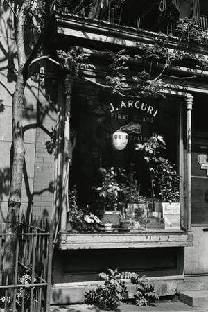 Shoe Repair Shop, New York, 1943 by Brett Weston