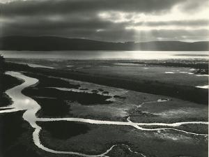 Tomales Bay, California, 1955 by Brett Weston