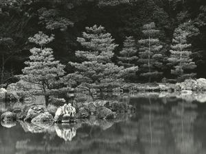Trees and Water, Japan, 1970 by Brett Weston