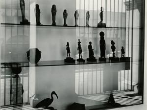 Window Reflection, California, 1954 by Brett Weston
