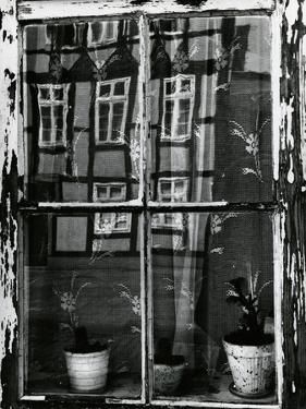 Window with Reflections, Europe, 1972 by Brett Weston