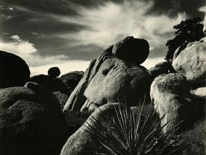 Yucca Valley, California, 1953 by Brett Weston
