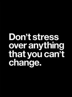 Dont Stress Anything That You Cant Change by Brett Wilson