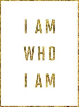 I Am Who I Am Copy by Brett Wilson