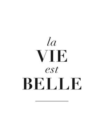 La Belle est Vie by Brett Wilson