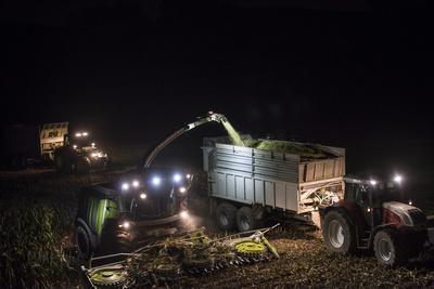 https://imgc.allpostersimages.com/img/posters/breuberg-hesse-germany-maize-harvest-by-night_u-L-Q11YIWO0.jpg?p=0