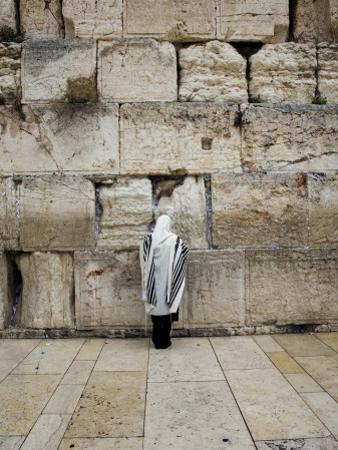 Man Wearing Prayer Shawl (Tallith) Praying at Western Wall by Brian Cruickshank