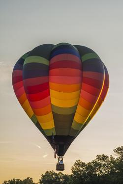 Hot Air Balloons Ascend at Sunrise by Brian Drouin