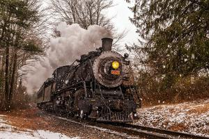 Scenic View of the Essex Steam Train Passing Through Forests in a Snow Shower by Brian Drouin