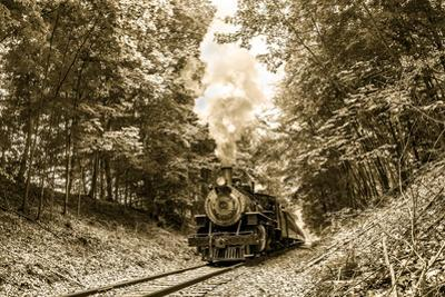The Essex Steam Train Chugs Through the Forest on a Summer Day by Brian Drouin