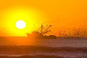 A Shrimp Boat with Hungry Birds at Sunrise by Brian Gordon Green