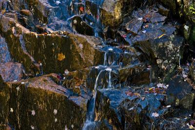 A Waterfall Trickles over Granite Rocks Covered with Leaves in the Fall by Brian Gordon Green