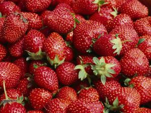 Close View of Freshly Picked Strawberries by Brian Gordon Green