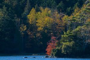 Fall Colors around Echo Lake on Mount Desert Island by Brian Gordon Green