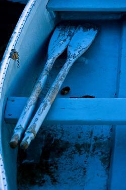 Oars Resting on a Thwart in an Old Blue Rowboat by Brian Gordon Green