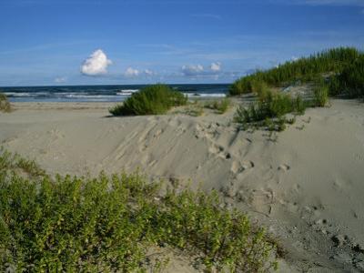 Ocracoke Island by Brian Gordon Green