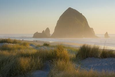 Evening Sunlight over Haystack Rock and the Cannon Beach, Oregon, USA by Brian Jannsen