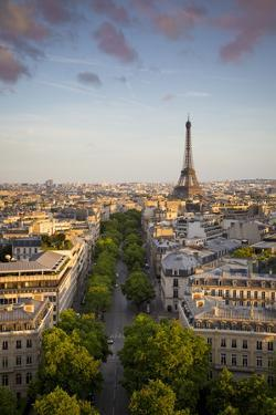 Evening Sunlight over the Eiffel Tower and Buildings of Paris, France by Brian Jannsen