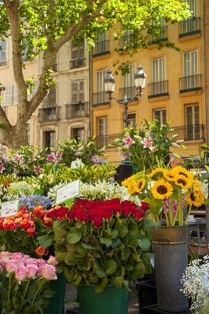 Flowers for Sale on Market Day in Aix-En-Provence, France by Brian Jannsen