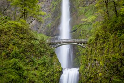Multnomah Falls in the Columbia River Gorge Near Portland, Oregon, Usa by Brian Jannsen