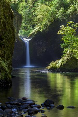 Punchbowl Falls along Eagle Creek Trail, Columbia Gorge, Oregon, USA by Brian Jannsen