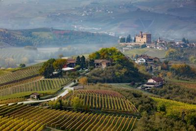 View over vineyards towards medieval town of La Morra, Piedmont, Italy by Brian Jannsen