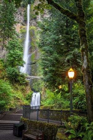 Walkway leading to Multnomah Falls, Columbia River Gorge, Oregon, USA by Brian Jannsen