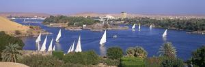 Feluccas on River Nile at Aswan by Brian Lawrence